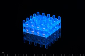 03_scaffolds_more_blue