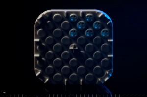 11_drug_well_array